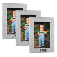 Brushed Aluminum Vertical Photo Frame