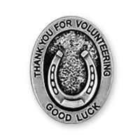 Good Luck Horseshoe Silver Pin Generic