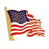 Stock American Flag Die Struck Lapel Pins