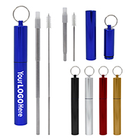 TELESCOPIC STAINLESS STEEL STRAW KIT