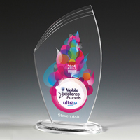 7613-1S (Screen Print), 7613-1L (Laser), 7613-1P (4Color Process) - Allure Acrylic Award - 8""