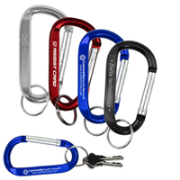 LARGE Size Carabiner Keyholder with Split Ring Attachment
