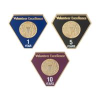 Milestone Pins (Years) - 1 Through 30 Years