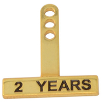 Yearly Milestone Rocker Pins (Straight)