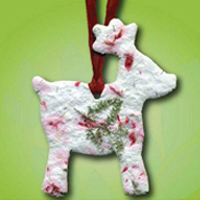 Reindeer Seeded Ornament