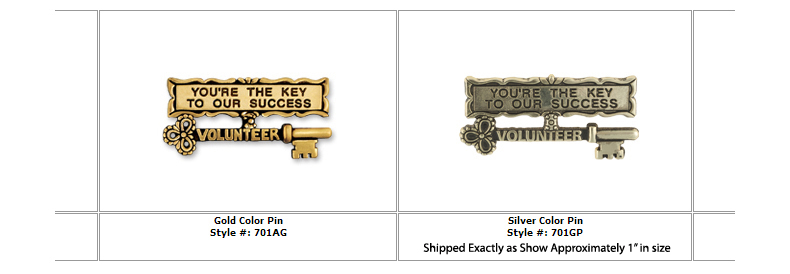 """You're the Key To Success"" Gold Lapel Pins"