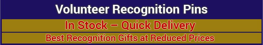 Volunteer Recognition Pins (silver)